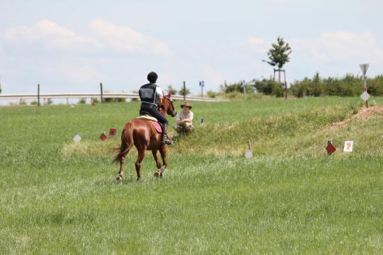 TREC WANGEN 12.06.2011
