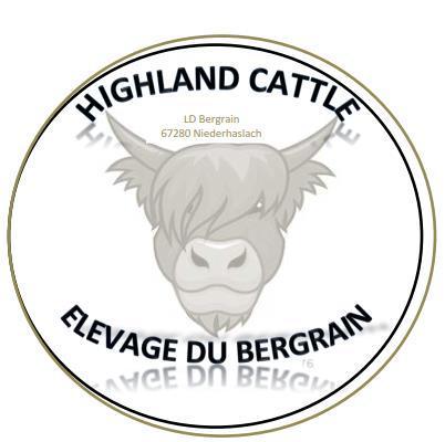 Logo highland 1